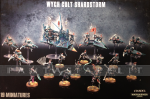 Wych Cult Shardstorm (19)